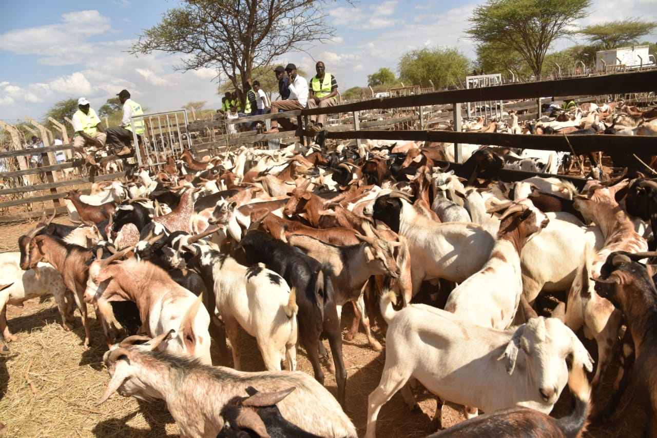 It's one year universal health cover for Baringo farmers